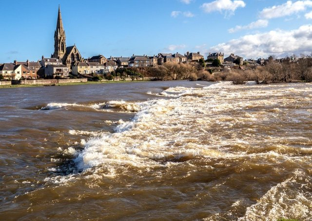 With recent heavy rain, the River Tweed at Kelso can be seen 'boiling' as it makes its way seawards. Curtis Welshsupplied this image.