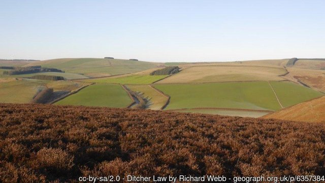 Ditcher Law in the Lammermuir Hills, seen from below Addinston Hill.  Photo © Richard Webb (cc-by-sa/2.0)