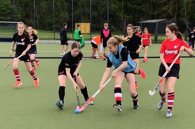 Young hockey enthusiasts in action