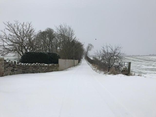 Snow at Edington yesterday.