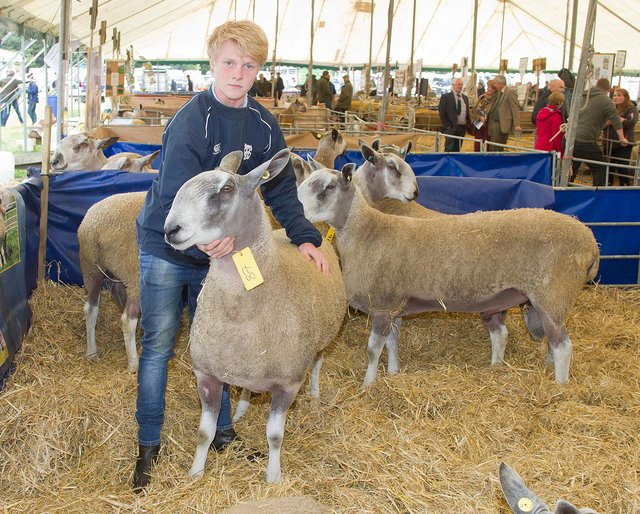 Andrew McClyman's ram went for £4,000 at Kelso auction in 2018. (Photo: BILL McBURNIE)