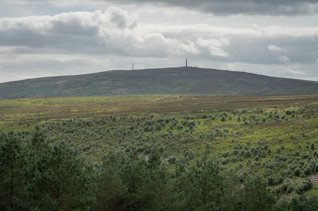 Langholm Moor, now owned by the community. Photo: David Lintern.