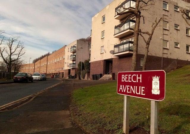 Beech Avenue in Galashiels.